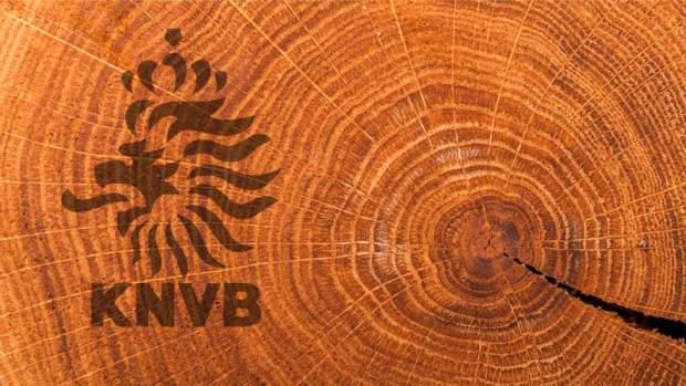 penampang pohon-bikin baju bola