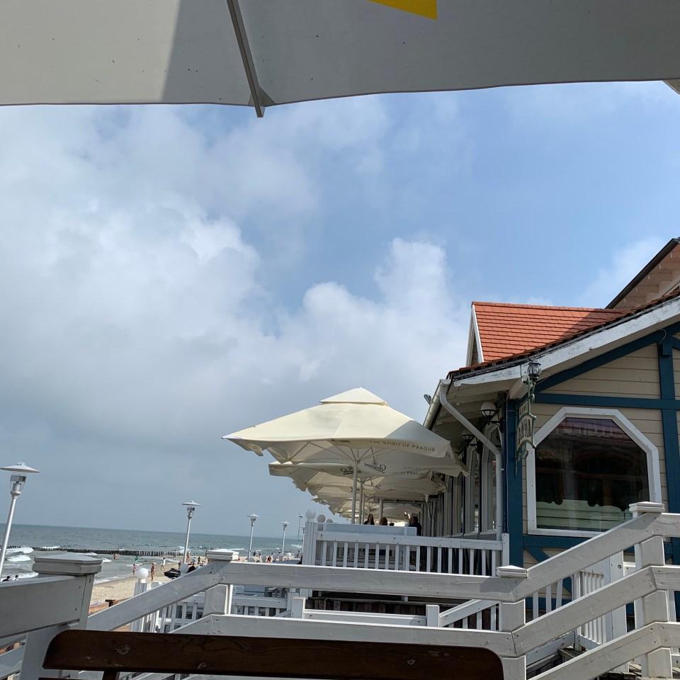 кафе у море дача зеленоградск