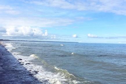 morskoj pejzazh zelenogradsk baltijskoe more