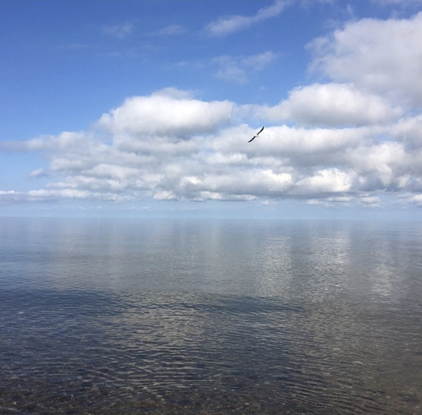 прозрачная гладь воды балтийское море зеленоградск морской пейзаж