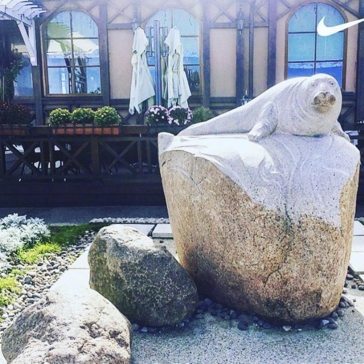 Скульптура Серый Балтийский тюлень в зеленоградский променад