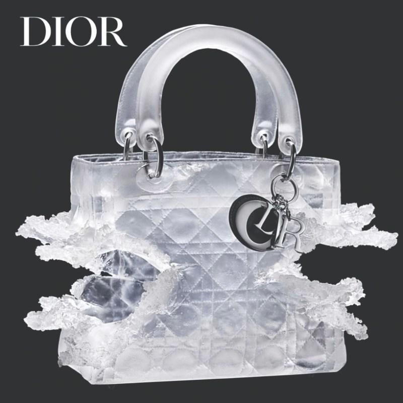 Lady Dior As Seen By в Ruarts