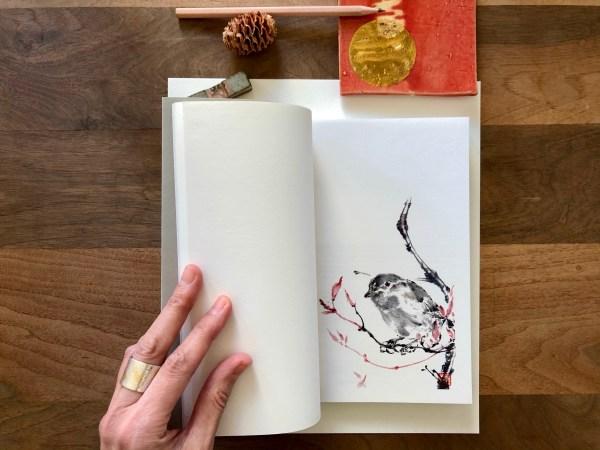 notebook content