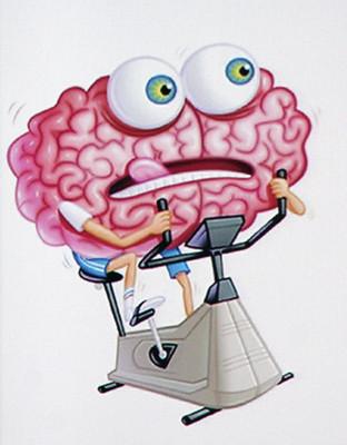 Cerveau qui fait du vélo d'appartement pour illustrer la remédiation cognitive. image : cerveau et cognition de Lorena Biret