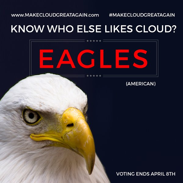 eagle-likes-cloud