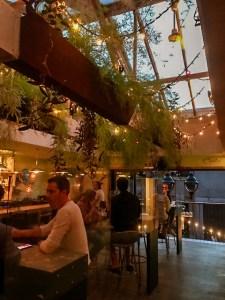 Suzanne Bar Montréal