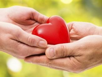 Match it now: appuntamento con la settimana della donazione di midollo osseo e cellule staminali CorriereAl