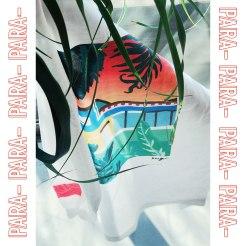PARA-goods2-s