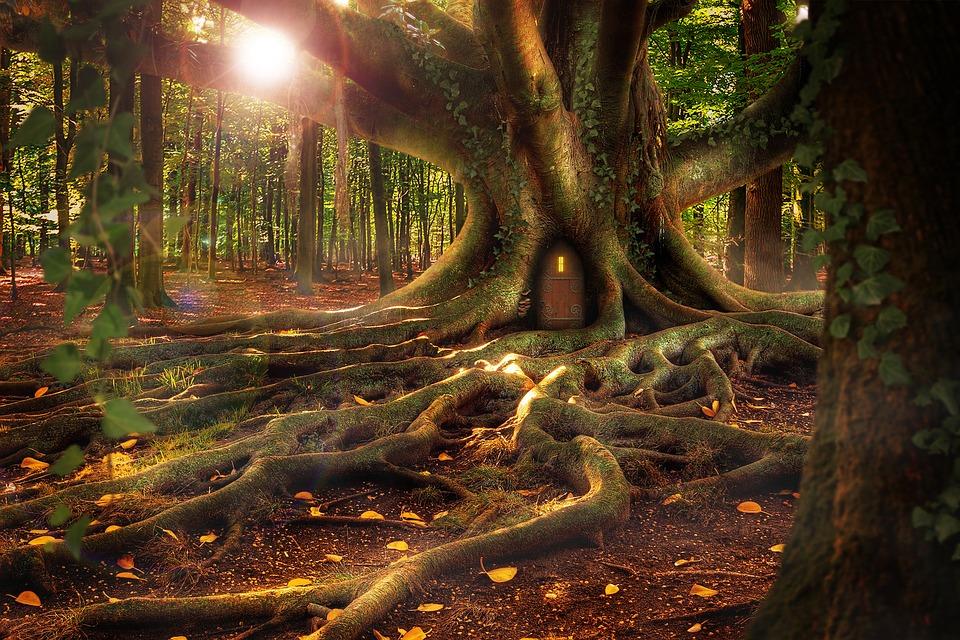 treehouse-1308108_960_720