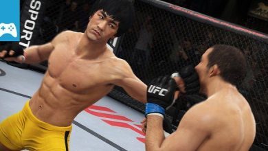 Bild von Review: UFC