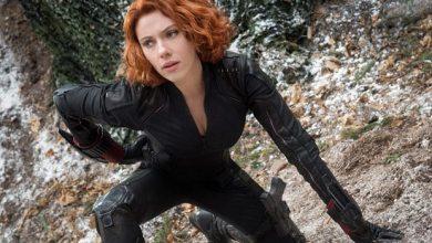 Photo of Black Widow: Cate Shortland als Regisseurin verpflichtet