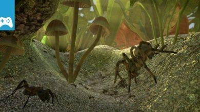 Photo of Game-News: Crowdfunding-Budget für Alkohol und Stripper verpulvert – Entwicklung von Ant Simulator eingestellt