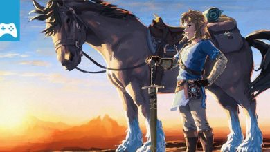 Bild von Game-News: The Legend of Zelda: Breath of the Wild – Koriose Belohnung für 900 Krog-Samen (Spoiler)
