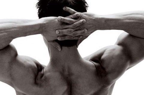 man-torso-muscle