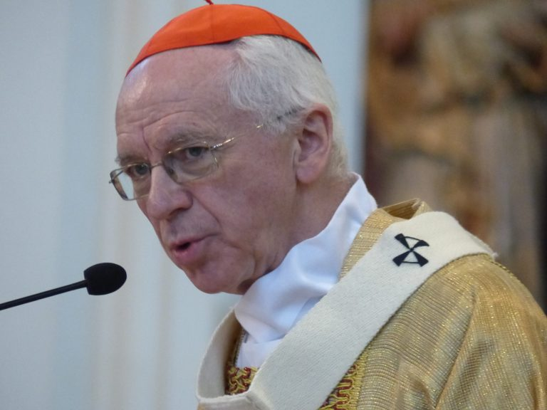 Kardinaal Jozef De Kesel: 'Ik ben ervan overtuigd dat het christelijk geloof in een cruciale overgangsperiode verkeert.'