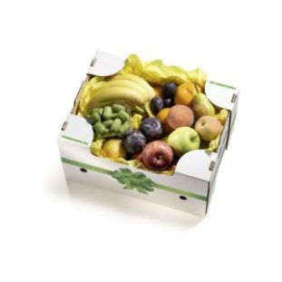 YellowBoxGeschenk_Magazin_Freshbox