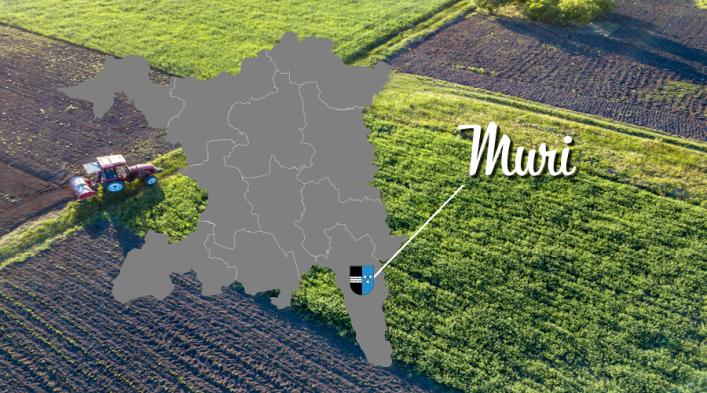 Reise durch den Aargau | Muri