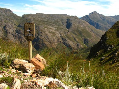 A camera trap in the Jonkershoek mountains.