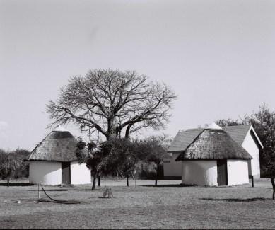 Balule Camp (1971) © W. de Beer/SANParks