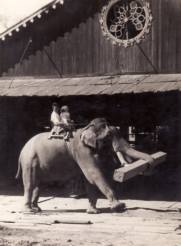Riding an elephant at the Moulmein mill.