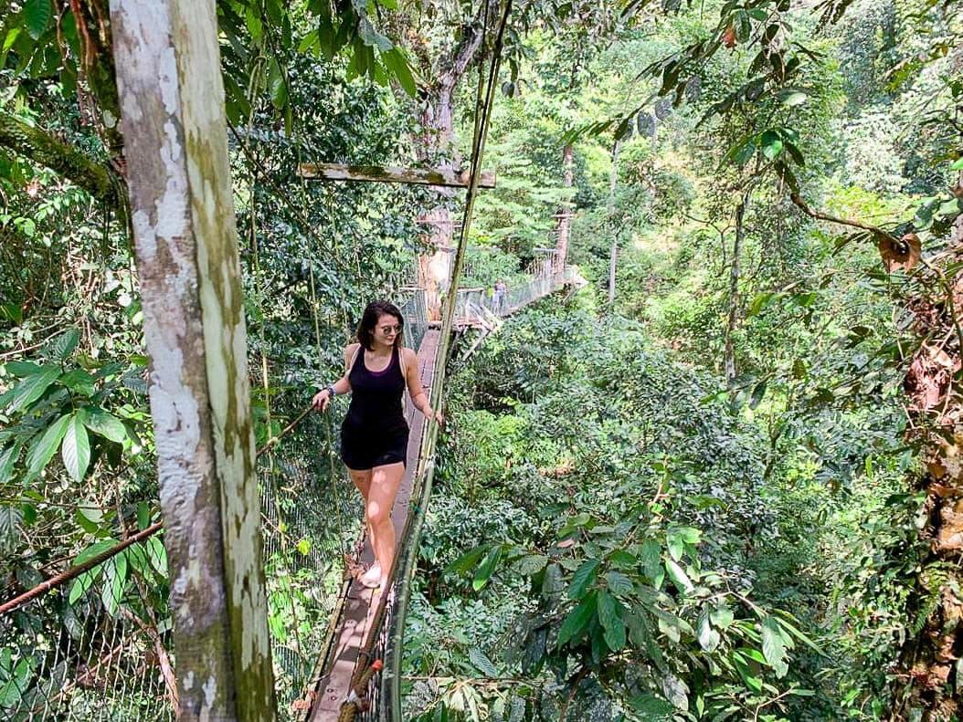 mulu marriot, malaysian retreats, digital detox, borneo, ayus wellness, forest bathing, nature immersion