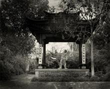 Chinese story No.5
