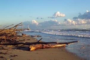 Spiaggia di Ostia 02 - © Veronica Buongiorno