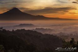 Java. Indonesia