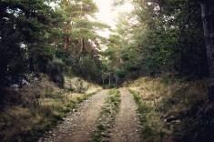Il mio Cammino verso Santiago - @ Nicola Congia