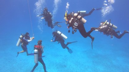 Group dive dynamics