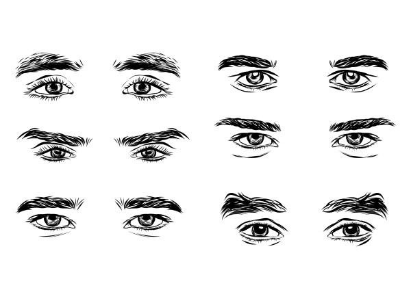 男性の眉毛サンプル