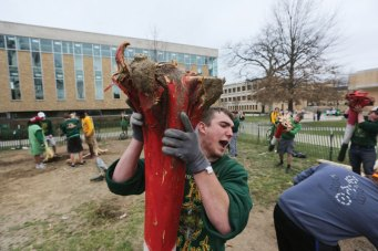 Students drove all the rubber snakes off campus with their shillelaghs during Snake Invasion.