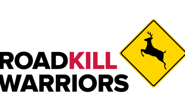 Roadkill Warriors