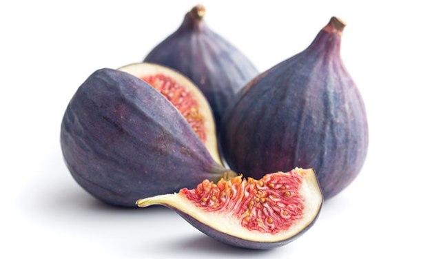 Figs 101