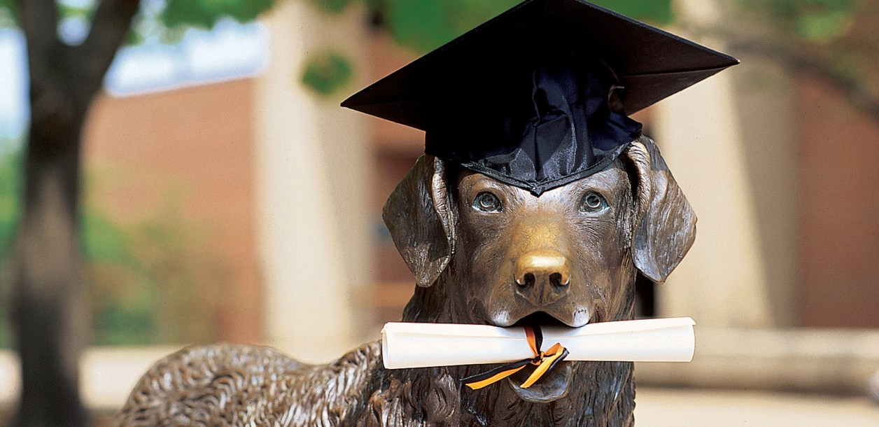 True grit statue with graduation cap and degree in mouth