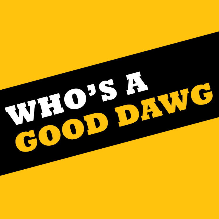 Who's a good dawg square
