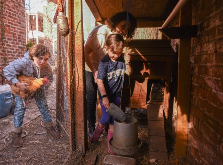 Crislip helps her daughters care for the family's backyard chickens. (Photo by Clement Britt)