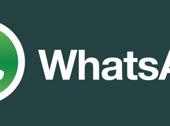 L'immagine mostra l'icona e il logo di WhatsApp