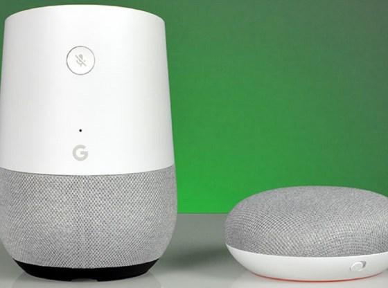 L'immagine mostra due dispositivi Google Home