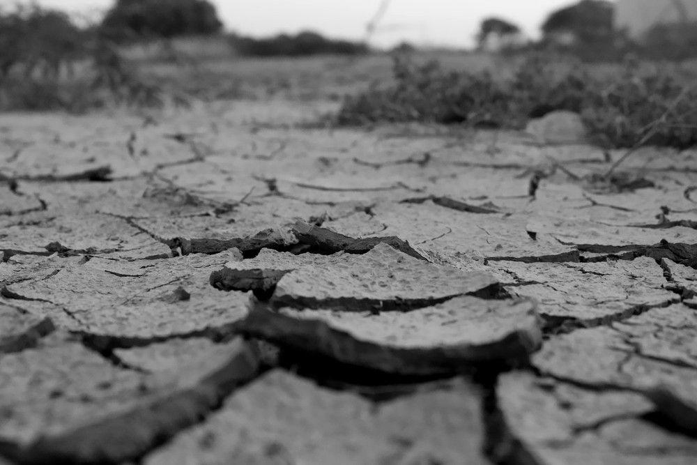 冬の乾燥肌は悪循環に陥る可能性大!肌本来のバリア機能の回復がカギ[PR]