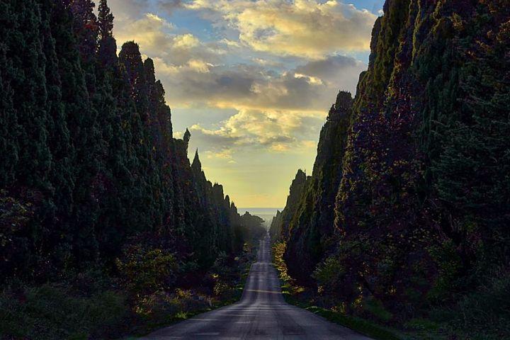 Viale dei cipressi immortalato da Carducci