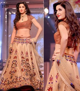 Bollywood actress Splendid Lehenga Choli 2018 for the wedding