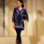 Luxury Silk Wear Collection 2018 by Farida Hasan (11)