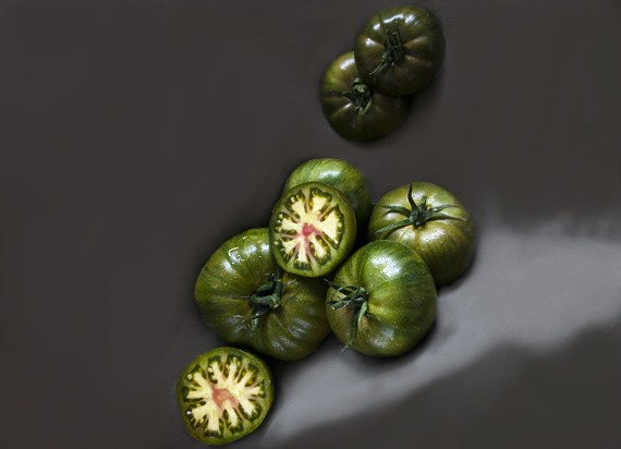 Seminte Rosii Cherokee lime stripes