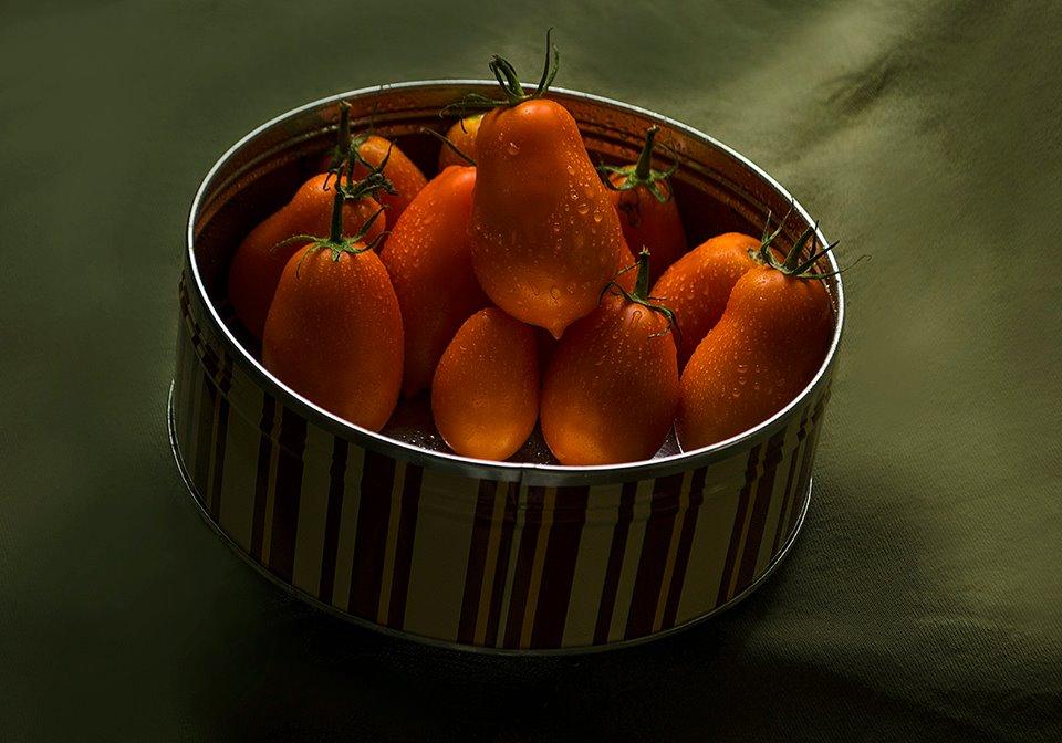 Rosii Prunisoare portocalii