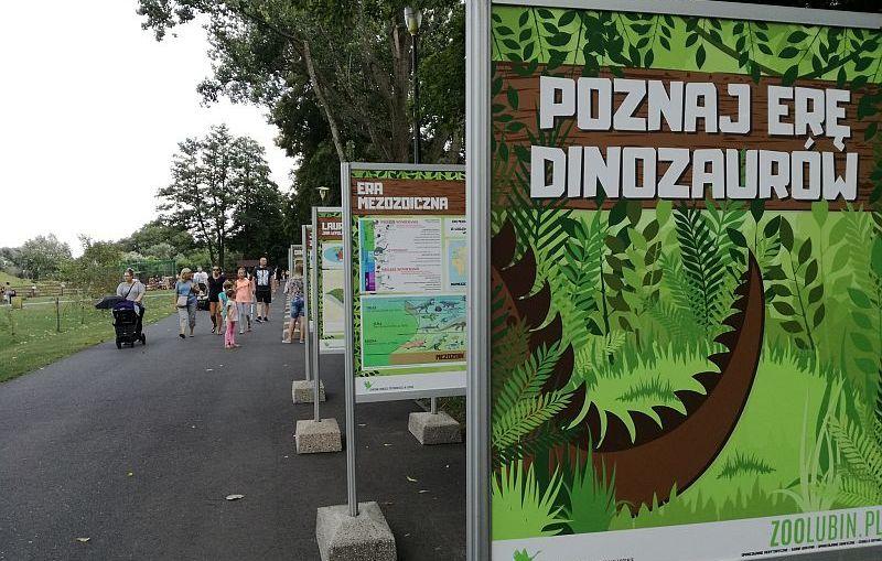 """ZOO Lubin – wystawa plenerowa """"Poznaj erę dinozaurów"""""""