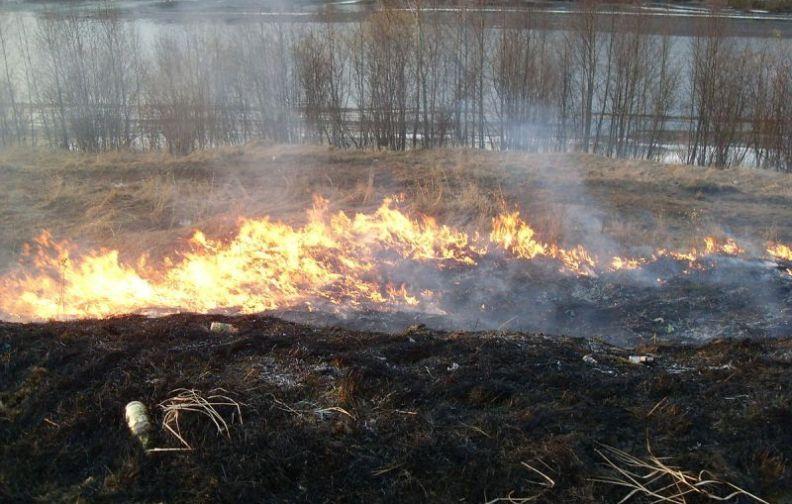 Kary i cofnięcie dopłat za wypalanie traw