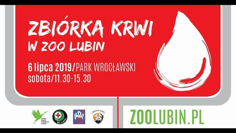 ZOO Lubin - Zbiórka krwi
