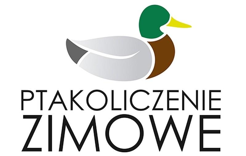 ZOO Lubin – Zimowe Ptakoliczenie z Dystansu – 29-31 stycznia 2021 r.
