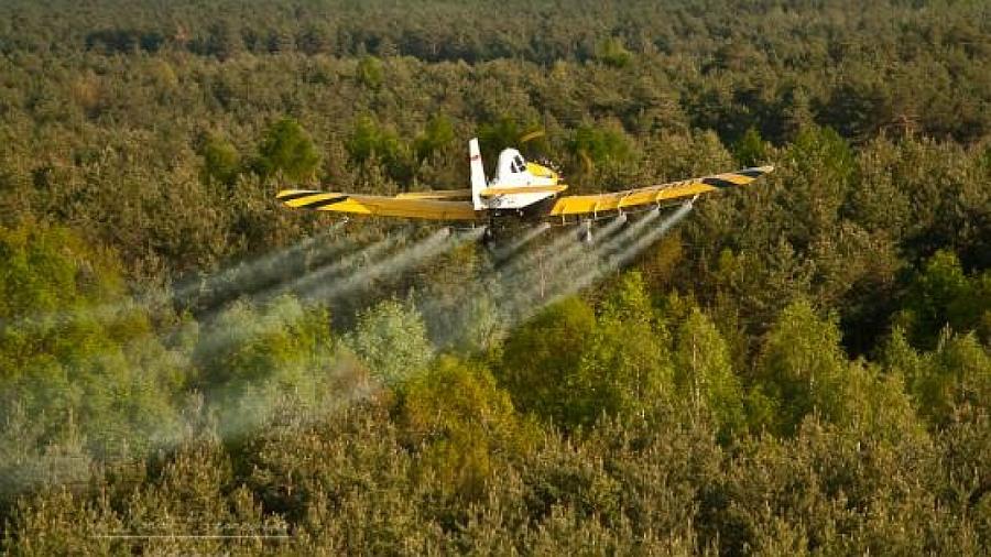 Lotnicze opryski w lasach – mogą potrwać do czerwca